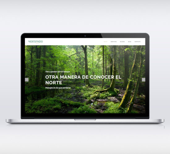 Norteando Servicios Turísticos web responsive